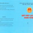 I. Điều kiện cấp giấy phép lao độngcho người nước ngoài làm việc tại Việt Nam – Là nhà quản lý, giám đốc điều hành, chuyên gia hoặc lao động […]
